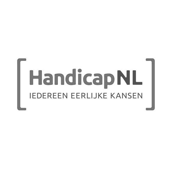handicap NL logo